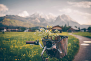 Bicycle stands on the side of a path with freshly picked wild flowers in the basket