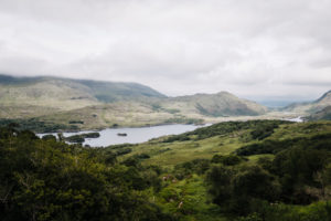 Blick auf den Upper Lake vom Ladies' View, Killarney-Nationalpark, Irland