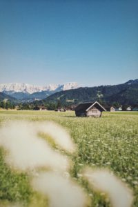 Haystadl standing in blooming meadow, Garmisch-Partenkirchen