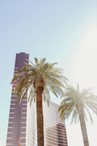 USA, Nevada, Las Vegas, 2 palm trees in front of facade of the Encore at Wynn hotel