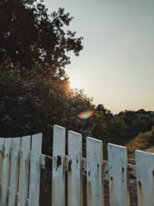 white garden fence, sun is setting between trees