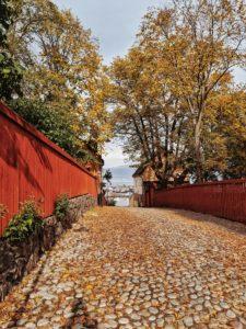 Stockholm, Schweden, Spaziergang durch Södermalm, Blecktornsgränd