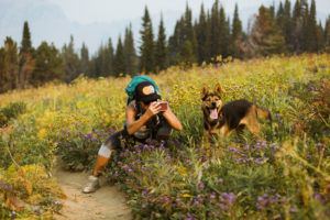 Woman photographing dog with mobile phone while crouching on field at forest