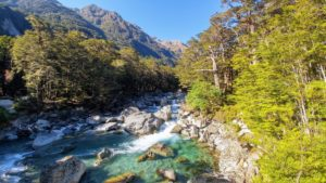 Crystal clear river in the forest on the Routeburn track in New Zealand