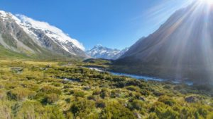 Snowy mountains in the background, green bushes in the foreground on the Hooker Valley Track in New Zealand