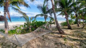 Hammock on the beach, surrounded by palm trees, Fiji