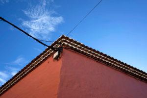 Europe, Canary Islands, La Gomera, house, detail