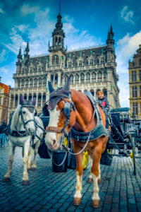 Europe, Belgium, Brussels, City, Downtown, Great Square, City Museum
