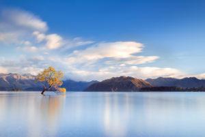 Long exposure on Lake Wanaka, Otago, New Zealand, Wanaka tree, mountain range