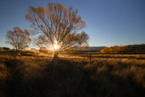 Autumn landscape at golden hour with sun star, Tekapo, Canterbury, New Zealand