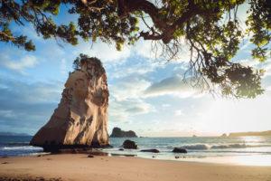 Te Hoho Rock in Cathedral Cove at sunrise, Coromandel Peninsula, New Zealand