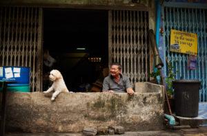 Man and dog in Bangkok