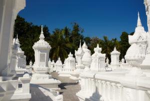 Wat Suan Dok in Chiang May