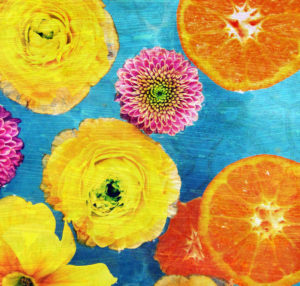 Composing of blossoms and slices of orange on blue underground,