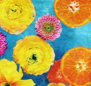 Composing von Blüten und Orangenscheiben auf blauem Untergrund,