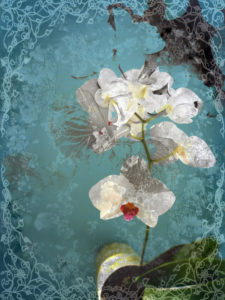 Composing, white orchid framed by floral pattern before blue background,