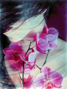 a montage of a portrait of a woman with pink orchids and texture