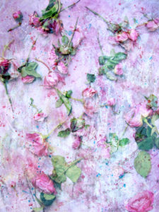 a poetic floral montage from pink roses on painted texture