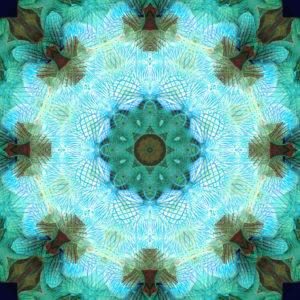 fotografisches blüten Mandala