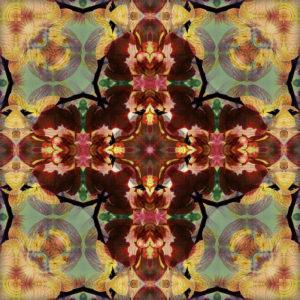 fotografisches Mandala kreuz von Orchideenblüten