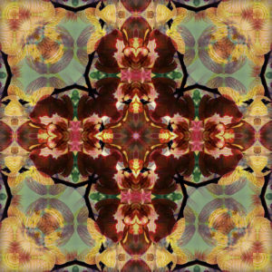 photographic Mandala cross from orchid blossoms