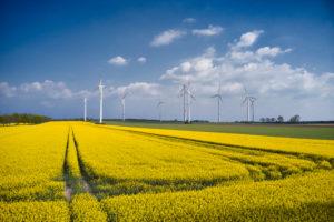 Landwirtschaft, Ackerbau, blühendes Rapsfeld, blauer Himmel, Windpark,