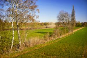 Landwirtschaft, Ackerbau, Trecker pflügt ein Feld, Feldrain, blauer Himmel,