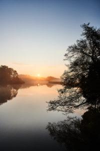 Nature, Germany, Lower Saxony, Lüneburg Heath, Brietlingen, Lüdershausen, Reihersee, sunrise, fog