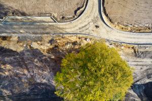 Infrastruktur, Strukturen, Formen, Spuren, Erdfarben, grüne Baumkrone, Erschließung eines Baugebiets, Straßenführung, einzelner Baum im Straßenraum