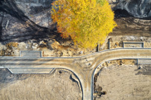Infrastructure, structures, shapes, traces, earth colors, yellow tree top, development of a building area, road layout, single tree in the street area