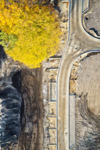 Infrastruktur, Strukturen, Formen, Spuren, Erdfarben, gelbe Baumkrone, Erschließung eines Baugebiets, Straßenführung, einzelner Baum im Straßenraum, Hochformat