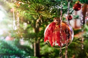 Weihnachten, Weihnachtsbrauch, Weihnachtsbaum, Tannenzweig, Christbaumkugel, Wachstropfen, Gegenlicht