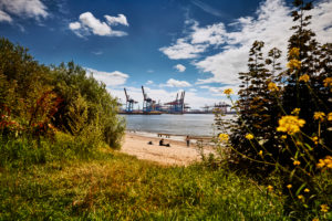 Germany, Northern Germany, Hamburg, Altona, Othmarschen, port city, sea customs port, Elbe, Elbe beach, view to a sandy bay, container terminal Burchardkai, nature and technology