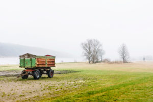 Riverside landscape, Elbe Valley, Germany, Northern Germany, Lower Saxony, Elbe, banks near Artlenburg, melancholy mood, winter mood, an agricultural harvest wagon, foggy background
