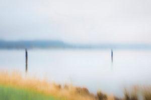 Artphoto, Intentional Camera Movement, Uferlandschaft, Elbtal, Deutschland, Norddeutschland, Niedersachsen, Elbe, Ufer bei Artlenburg, melancholische Stimmung, Ufer im Nebel