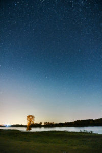 Night shot, celestial vaults, starry sky at the time of the Perseids, Germany, Northern Germany, Lower Saxony, Elbe valley, Elbe bank at Barförde, downstream,