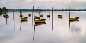 Morgenstimmung mit Ruderbooten auf dem Pfäffikersee