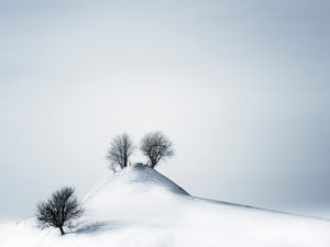 Winterlandschaft im Tannzapfenland im Kanton Thurgau
