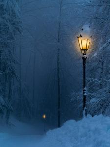 Winternacht im Uetlibergwald, Planetenweg