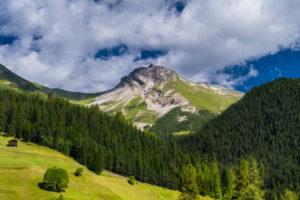Sommerliche Berglandschaft bei Davos Wiesen