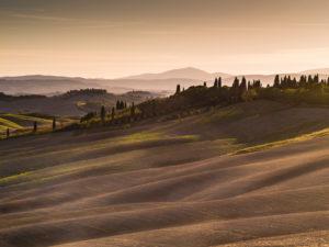Herbstliche Landschaft in der Toskana bei Siena, Abendstimmung