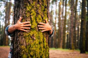 Ecology and environment concept with caucasian people woman hugging a green tree in the outdoor forest - nature and eco lifestyle - change the world - world's day and protection for life and planet