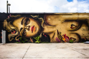 Mural at Wynwood Art District,