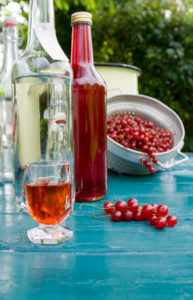 Redcurrant liqueur production,