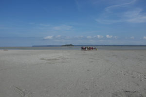 Mont Saint Michel, mudflat hiking