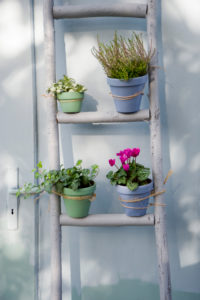 Autumn decoration, flower ladder