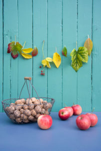 Autumn decoration with garland, apples and walnuts