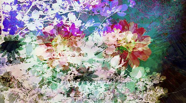 Composing, Blüten, Sträucher, Zweige, unterschiedlich