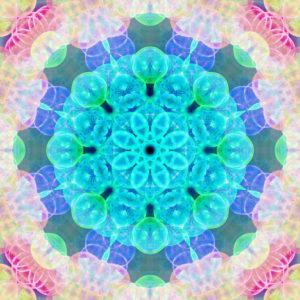 Photographic flower mandala, blue, turquoise, pink, yellow,