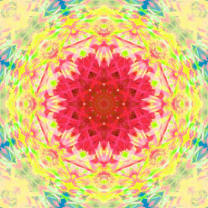 Photographic flower mandala, red, yellow, green, blue,